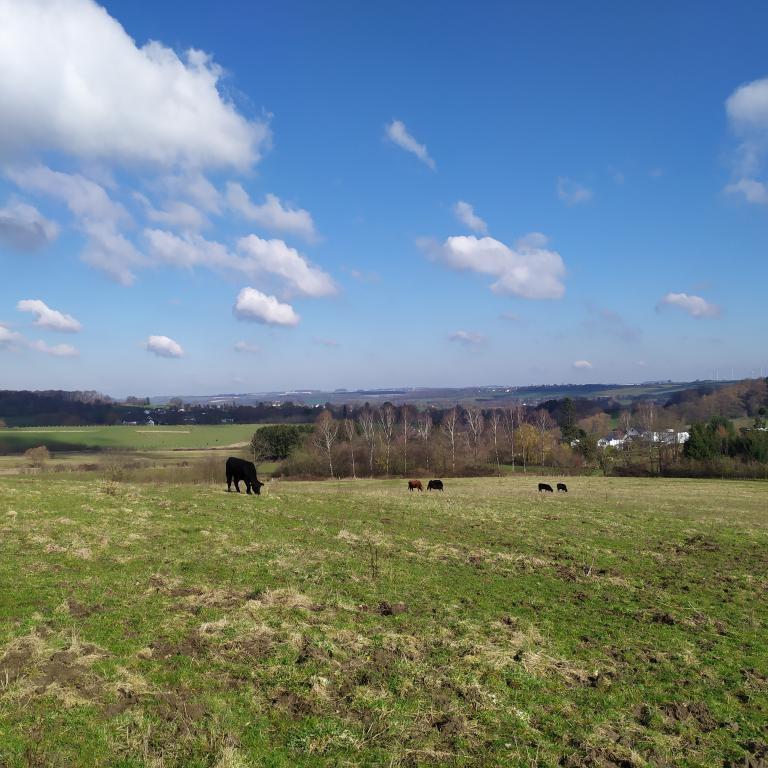Dutch-Mountain-trail-dag-3-15