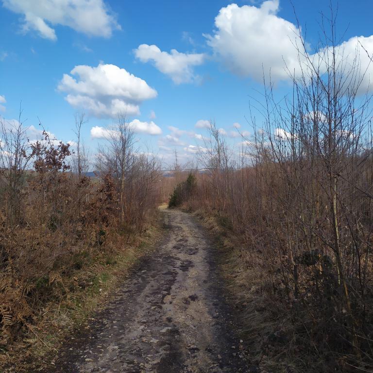 Dutch-Mountain-trail-dag-3-25