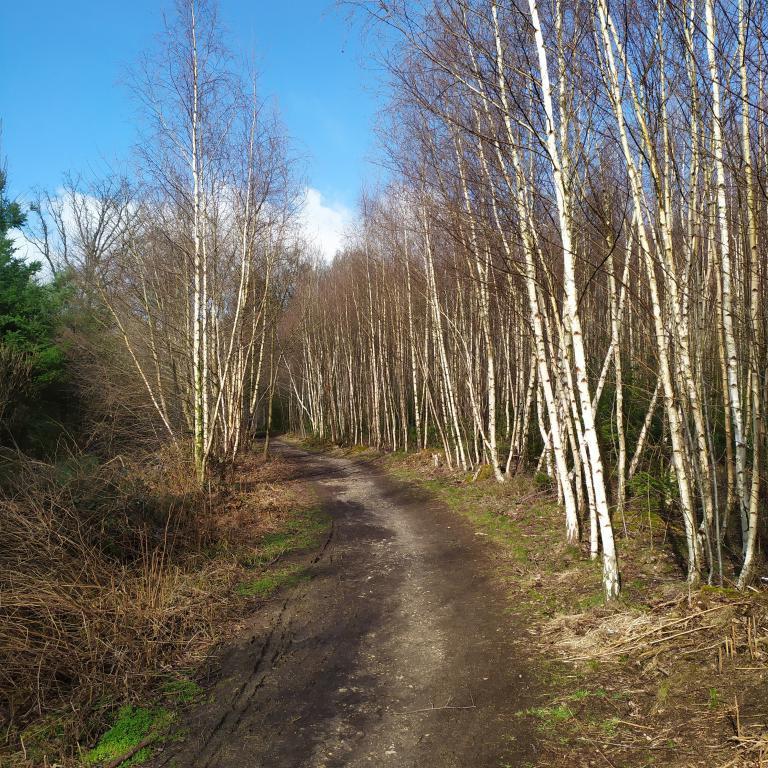 Dutch-Mountain-trail-dag-3-5