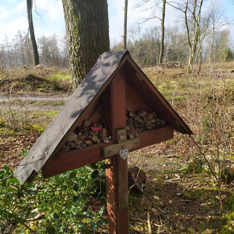 Dutch-Mountain-trail-dag-3-6