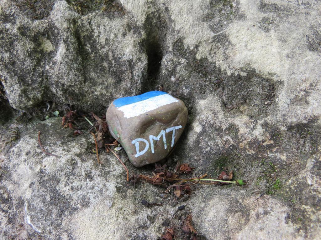 mini_DTM-7-39