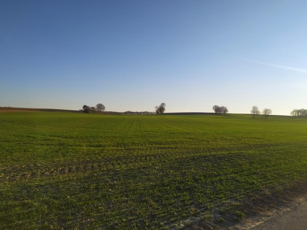 Kollenberg-voorjaar-11