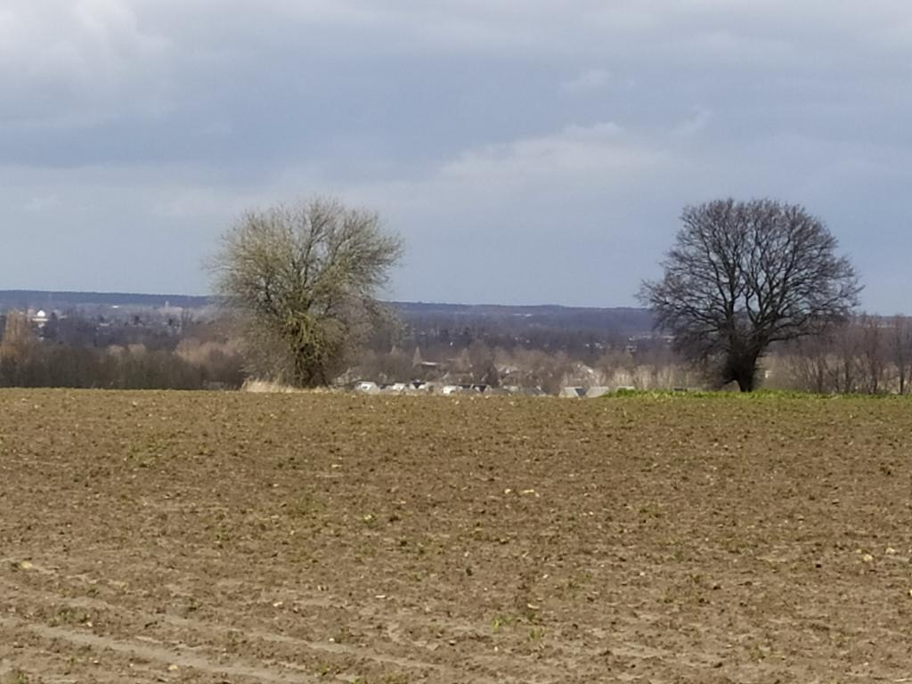 Kollenberg-voorjaar-9