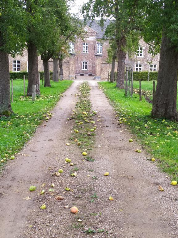 mini_Krijtlandpad-etappe-5-13