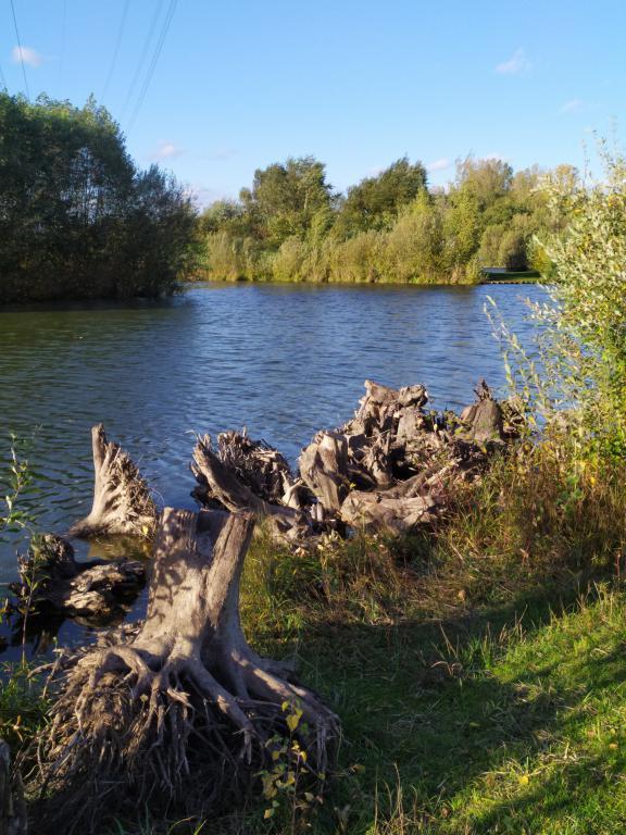 mini_Schinveldse-bos-herfstwandeling-29