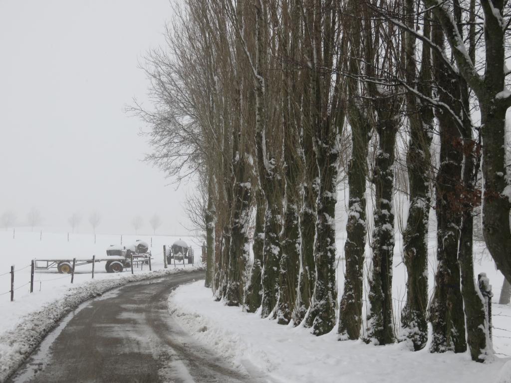 mini_Via-coriovallum-etappe-6-29