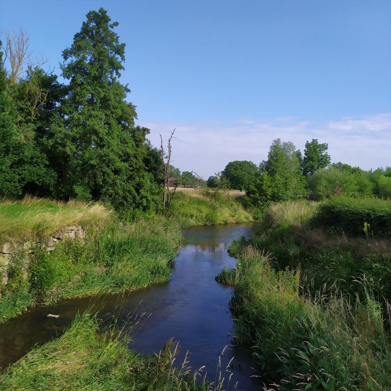 Wandeling-Mechelen-2