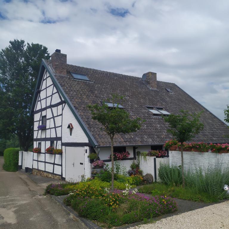 Wandeling-Mechelen-31