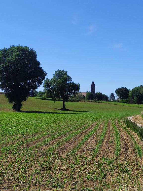 Wandeling-Merkelbeek-6