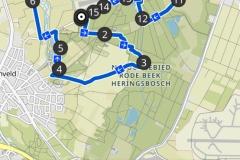 Schinveldse-bos-2-23