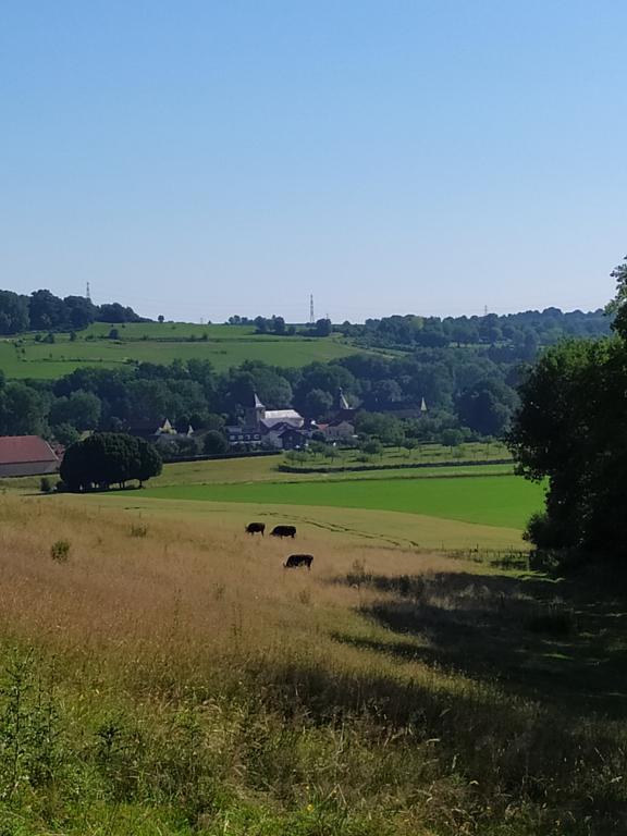 Wandeling-Valkenburg-kastelen-11