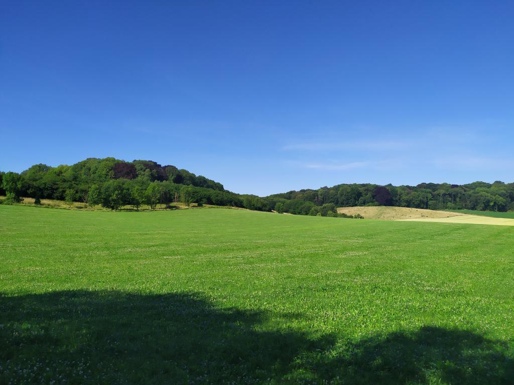 Wandeling-Valkenburg-kastelen-15