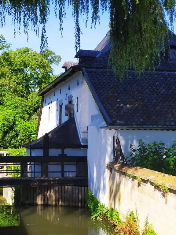Wandeling-Valkenburg-kastelen-20