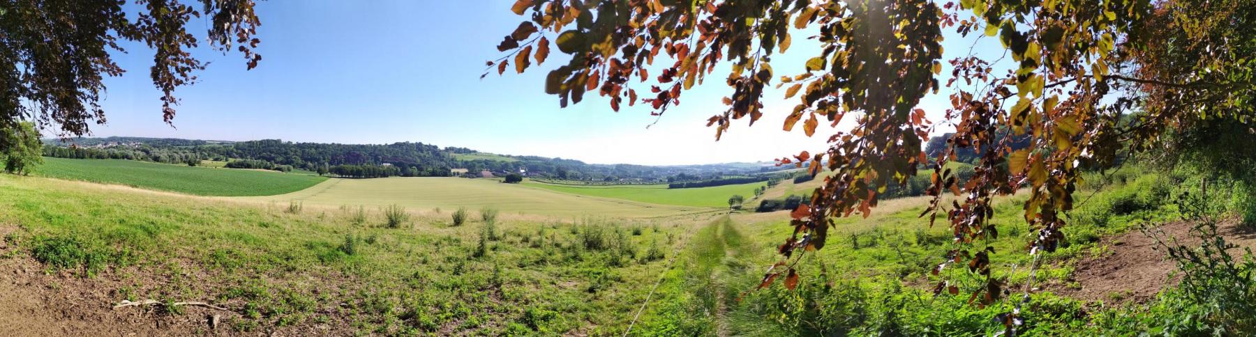Wandeling-Valkenburg-kastelen-34