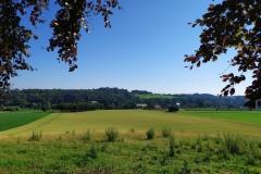 Wandeling-Valkenburg-kastelen-9