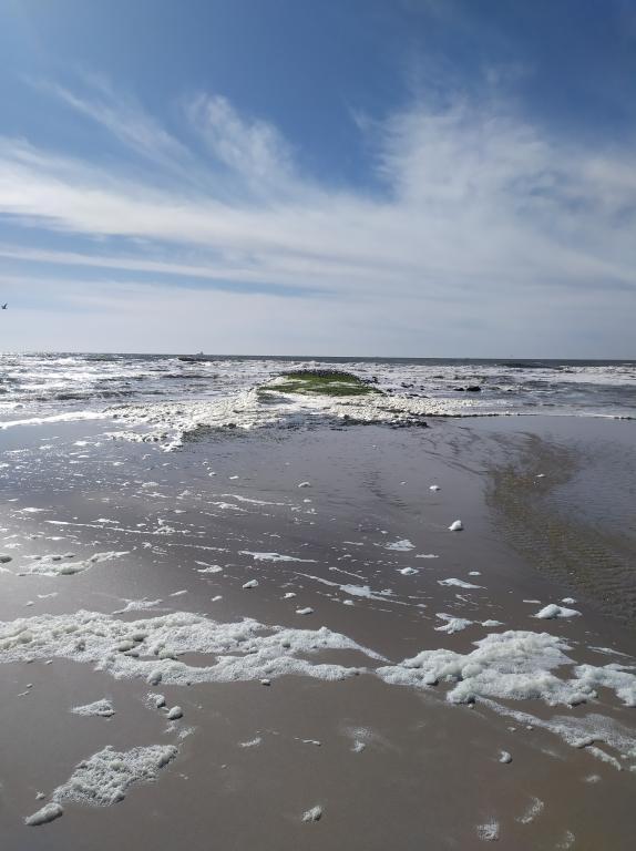 Wandeling-zee-julianadorp-9