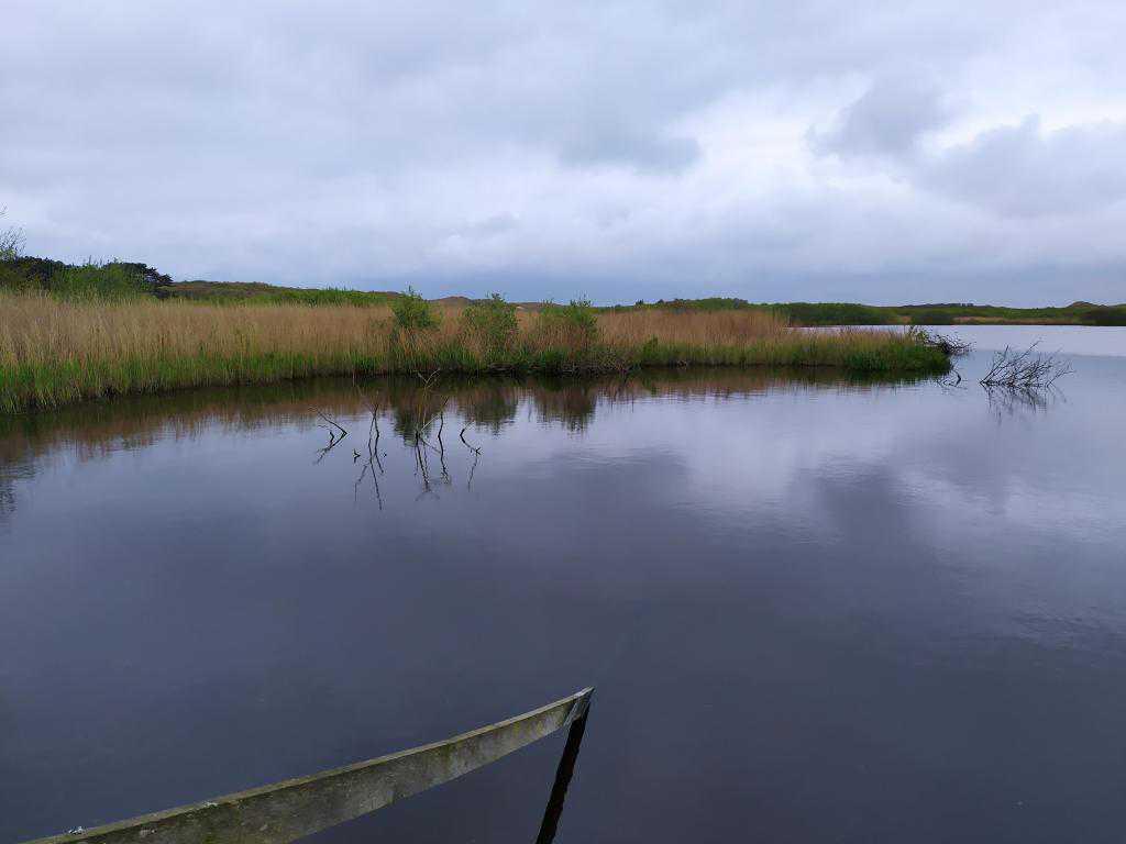 Zwanewater-Callentsoog-11