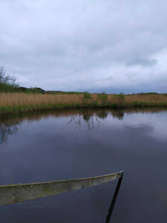 Zwanewater-Callentsoog-12