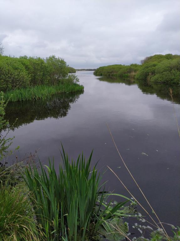 Zwanewater-Callentsoog-14